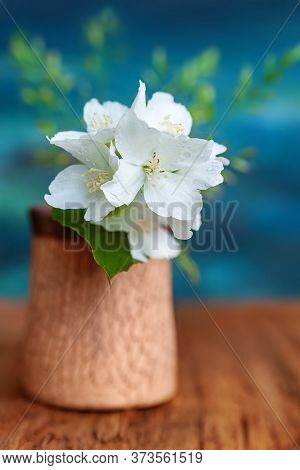 Bouquet Of White Flowers Of Wild Jasmine On A Blue Background. Rustic Still Life With Jasmine On A W