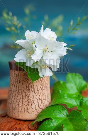 Bouquet Of White Flowers Of Wild Jasmine On The Artistic Background. Country Still Life With Jasmine