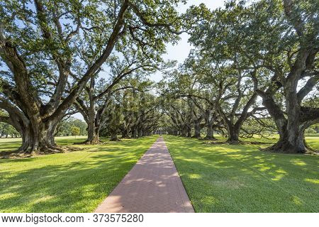 Saint James Parish, Louisiana - October 6, 2019 Oak Trees Oak Alley Plantation House Vacherie Saint