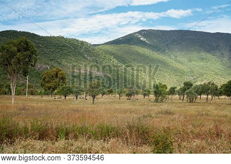 Sunlight On A Rural Mountain Range With Black Cattle Lying In The Grass In A Paddock