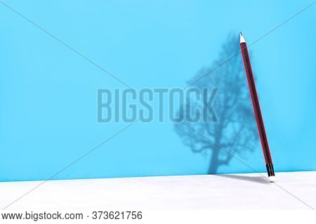 A Wooden Pencil Is Leaning Against The Wall And The Shadow From It Projects The Shadow Of A Living T