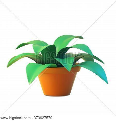 Vector Of Indoor Plant In Pot, Realistic Tree Front View.