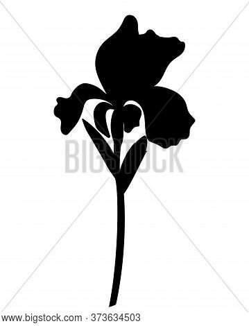 Black Silhouette Of A Large Iris Flower With Leaves, Bud And Stem - Stock Illustration. Iris - Black
