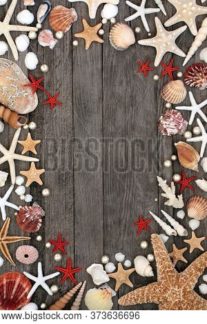 Seashell abstract background border with a variety of shells and pearls on rustic wood with copy space.