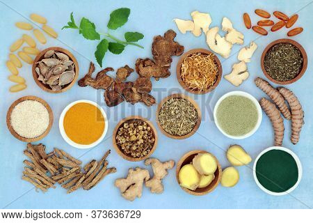 Herbs and spices used in chinese herbal medicine to treat irritable bowel syndrome with dietary supplement powders, evening primrose & fish oil capsules. Flat lay.
