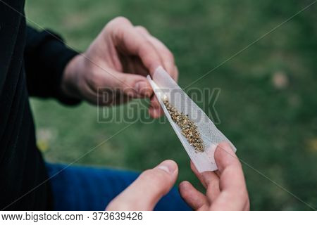 Cannabis Nature Bud. The Pot Leaves On Buds. Marijuana Weed Bud And Grinder. Sativa Thc Cbd.