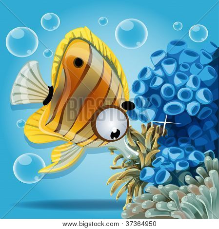 discus fish on a blue background with anemones and corals