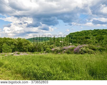 Rolling Hills And Fields Of Green In Southwest Pennsylvania Near Pittsburgh With A Bright Blue Sky F