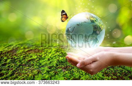 A Man With A Glass Globe Concept Day Earth Save The World Save Environment The World Is In The Grass
