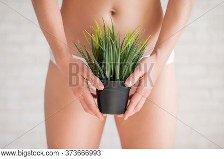 Bikini Area Depilation. Advertising Brazilian Laser Bikini Line Hair Removal. A Woman In White Under