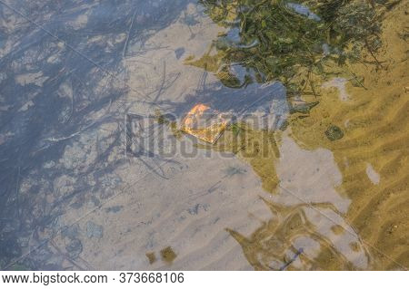 A Chip Snack Bag Laying Underneath The Water On The Sandy Bottom Of The Shore In The Lake Discarded