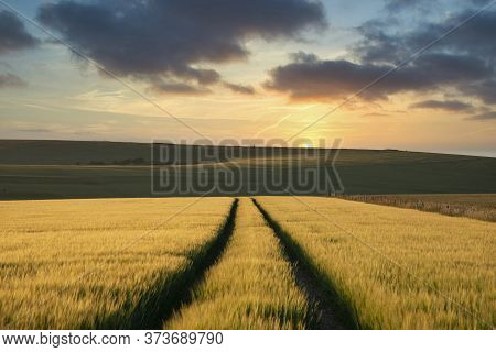 Beautiful Late Summer Afternoon Light Over Rolling Hills In English Countryside Landscape With Vibra