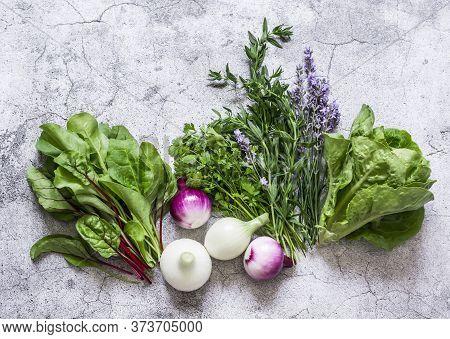 Food Background. Garden Herbs - Spinach, Cilantro, Romaine Salad, Lavender, Red Onion - Delicious Ar