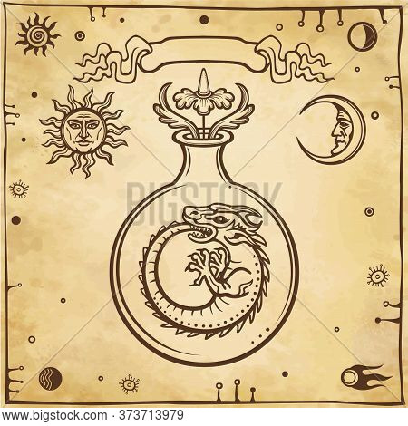 Set Of Alchemical Symbols. Origin Of Life. Mystical Snakes Ouroboros In A Test Tube. Religion, Mysti