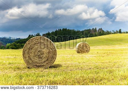 Haystack Agriculture Field Landscape. Agriculture Field Hay Stacks.mown Meadow With Blue Sky And Clo