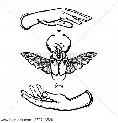 Human Hands Hold Goliath's Bug. Symbol Of The Moon. Mystical Allegory. Vector Illustration Isolated
