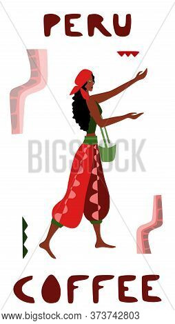 Vector Illustration Of Woman Pickers Are Harvesting Coffee From Branches Of Trees. Coffee Beans Temp