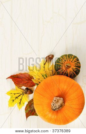 Pumpkin, Gourd And Acorns With Colorful Leaves