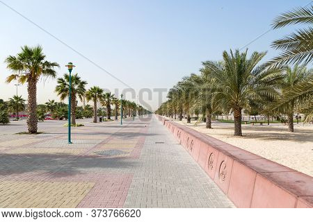 A Wide Sidewalk Along Which Palm Trees And Tropical Plants Grow. A Wide Sidewalk Along Which Palm Tr