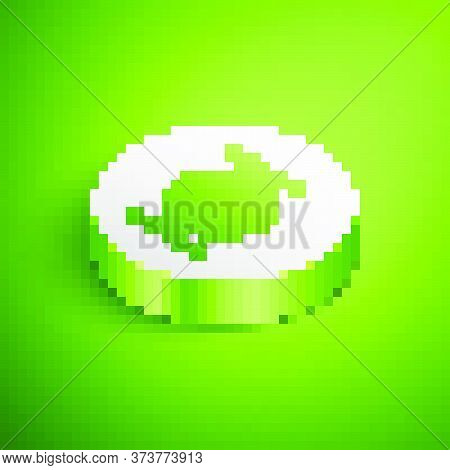 Isometric Served Cucumber On A Plate Icon Isolated On Green Background. Marine Food. White Circle Bu