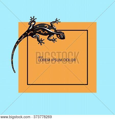 Lizard Logo Design Vector Template. Iguana Icon Illustration. Salamander.