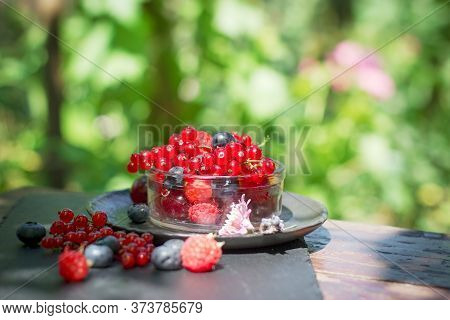 Organic Red Currant In Glass Bowl On Rustic Wooden Table Outdoor