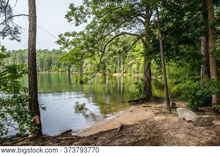 A Calm And Peaceful Day In Summer In The Inlet At The Lake With Surrounding Trees And A Overcast Sky