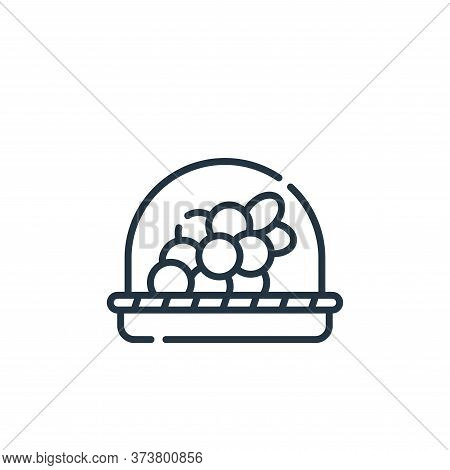 grapes icon isolated on white background from vegan food collection. grapes icon trendy and modern g