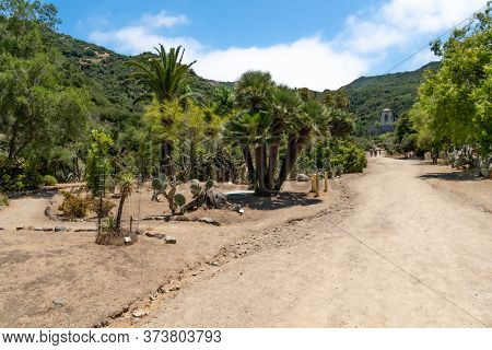 Wrigley Memorial And Botanic Garden On Santa Catalina Island, California, Usa. June 20th, 2020