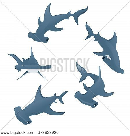 Hammerhead Sharks Swim In A Circle Underwater Giant Animal Simple Cartoon Character Design Flat Vect
