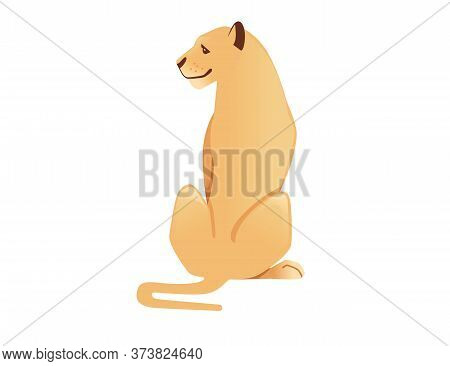 Adult Lioness Sit On The Ground African Wild Predatory Cat Female Lion Cartoon Cute Animal Design Fl