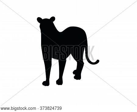 Black Silhouette Adult Lioness African Wild Predatory Cat Female Lion Cartoon Cute Animal Design Fla
