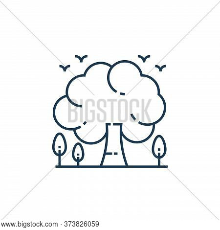 tree icon isolated on white background from environment and eco collection. tree icon trendy and mod