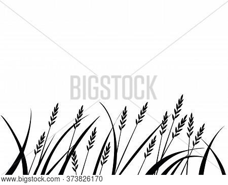 Black Silhouette African Savanna Grass Flat Vector Illustration On White Background