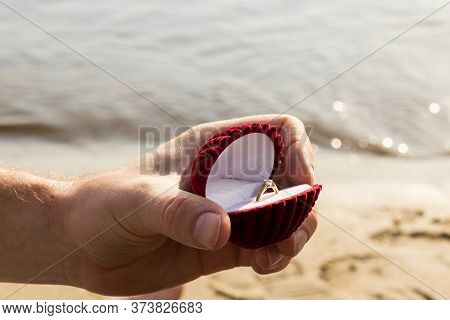 Groom Hold Ring. Gives A Ring. Proposal To Get Married