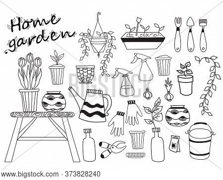 House Garden. Set Of Indoor Plants, Flowerpots Tools. Human Hobby At Home At Home And In Self-isolat