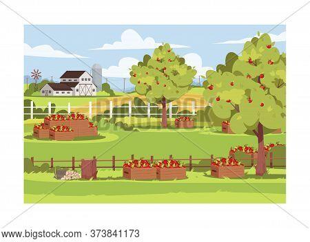 Farm With Fruit Trees Semi Flat Vector Illustration. Fresh Apple Harvest In Caskets. Garden Outside