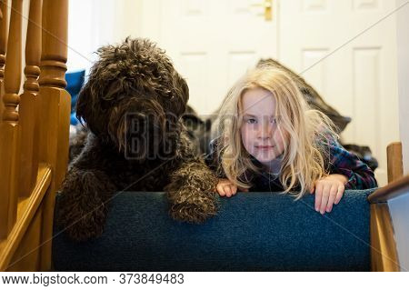 A Young Blonde Girl And A Shaggy Black Labradoodle Looking Down From The Top Of The Stairs.