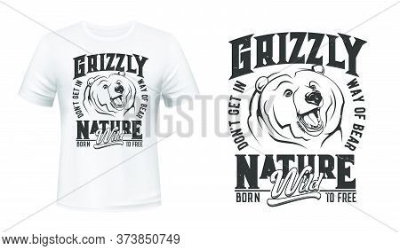Grizzly Bear Mascot T-shirt Print Vector Mockup. Emblem With Roaring Bear Head, Grizzly Showing Fang