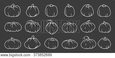White Doodle Autumn Pumpkin Icon Set. Line Sign Thanksgiving And Halloween, Season Crop Capacity. Co