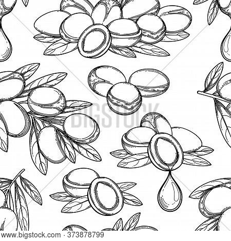 Seamless Pattern Of Graphic Argan Plants. Vector Design