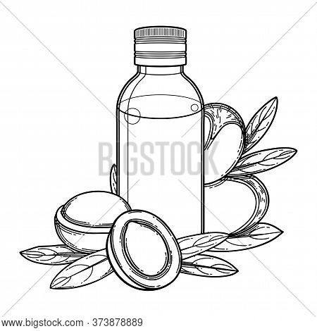 Graphic Oil Bottle Surrounded By Argan Plants