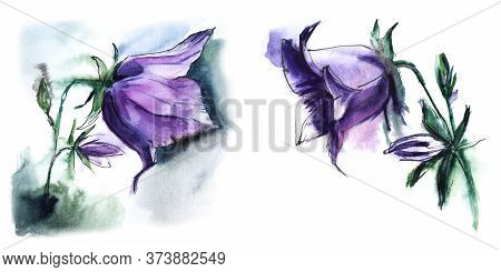 Watercolor Set Of Bluebell Images For Invitations And Postcards. Elegant Blurry Flowers With Large L