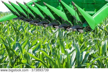 Agricultural Machinery At Ukraine. Combine Headers And Fronts. Corn Harvester.