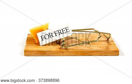 Conceptual Picture Of A Mousetrap With A Piece Of Cheese And The Inscription For Free On A White Bac