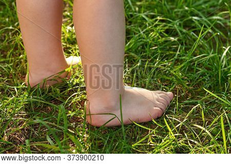 The Feet Of A Small Child On The Grass, Walking On Bumps.