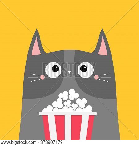 Gray Cat Popcorn Box. Cute Cartoon Funny Character. Kids Print For Tshirt Notebook Cover. Cinema The