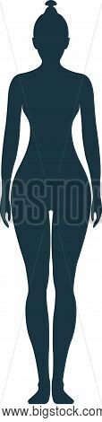 Female Human Character, People Woman Front Side Body Silhouette, Isolated On White, Flat Vector Illu