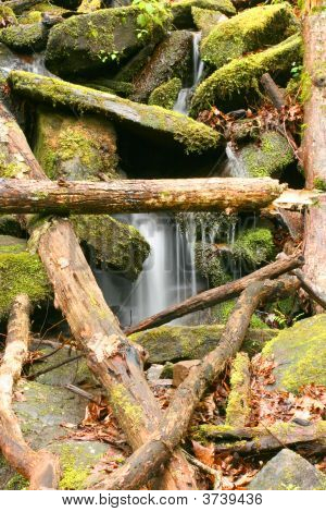 Waterfall In Tremont