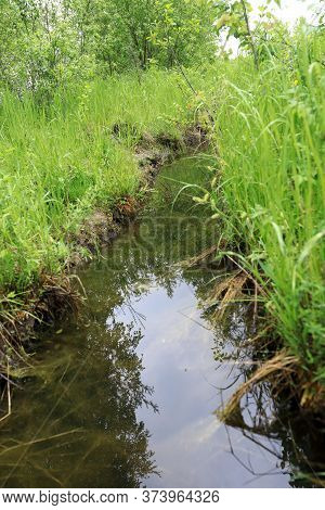 Canal In Estuary Of Lake Seliger In Summer